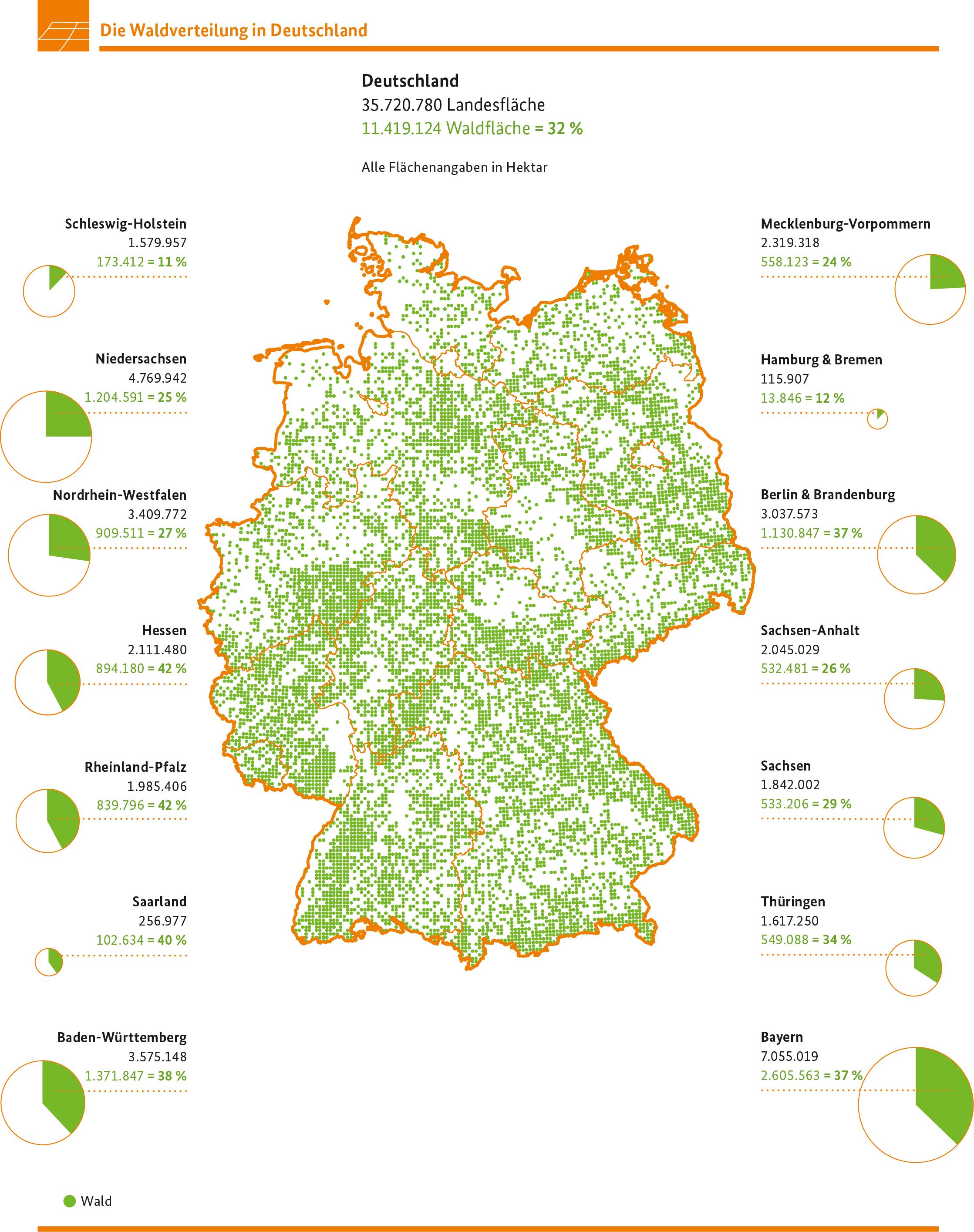 Bmel Bundeswaldinventur Waldland Deutschland Waldflache Konstant